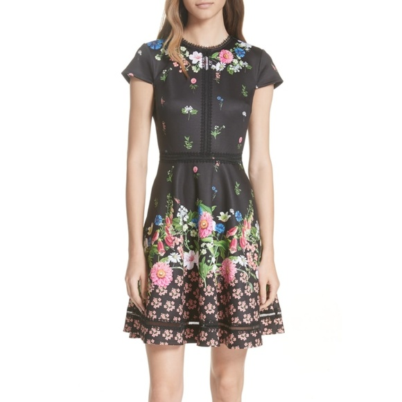 7b0ad8566185a9 NWT Ted Baker London Florence Trim Skater Dress 0